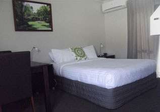 Superior Studio Suite accommodation hamilton